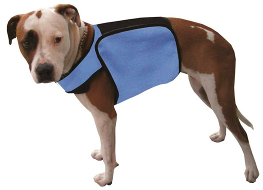 TechKewl Phase Change Cooling Dog Coat: photo